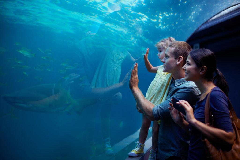 Shot of a young family enjoying a day at the aquarium